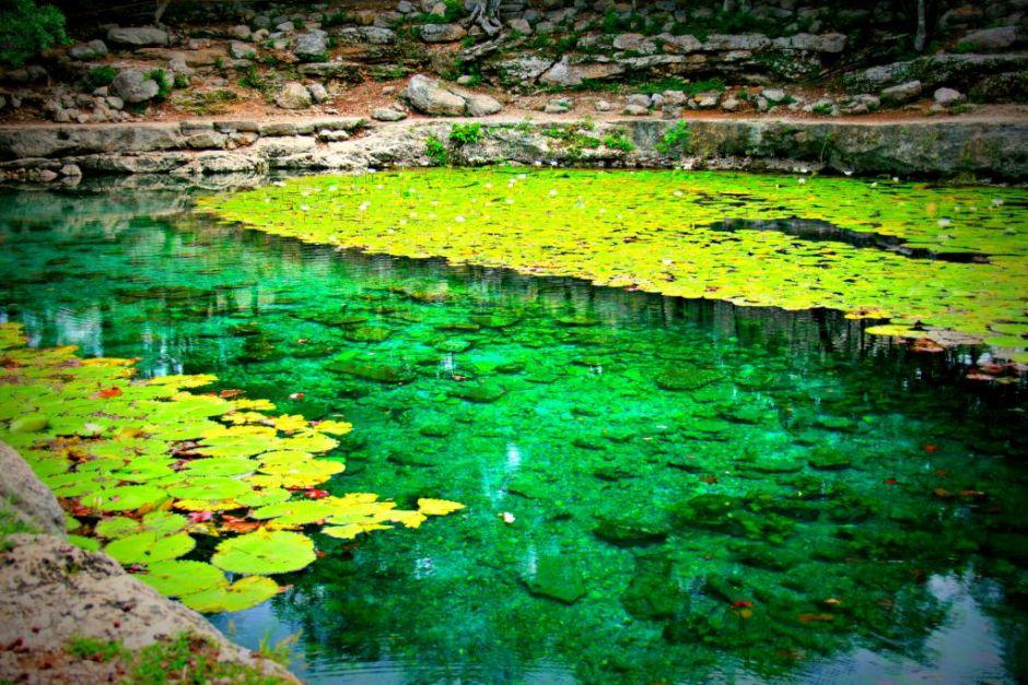 Cenote Xlacah: Voluntad Maya