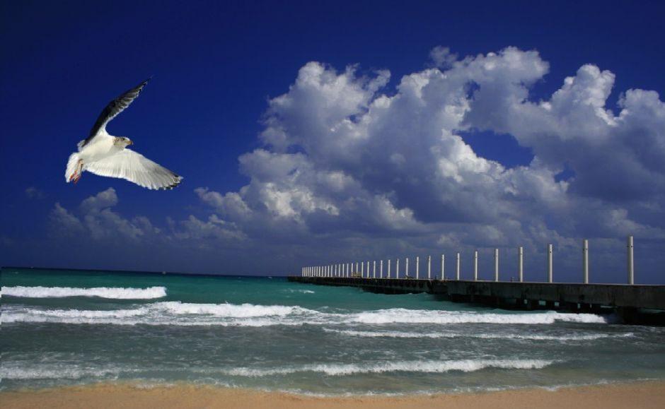 Cómo Llegar De Bacalar A Playa Del Carmen