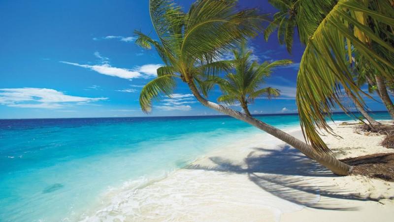 Top 5 caba as en playa del carmen - Fotos de hamacas en la playa ...