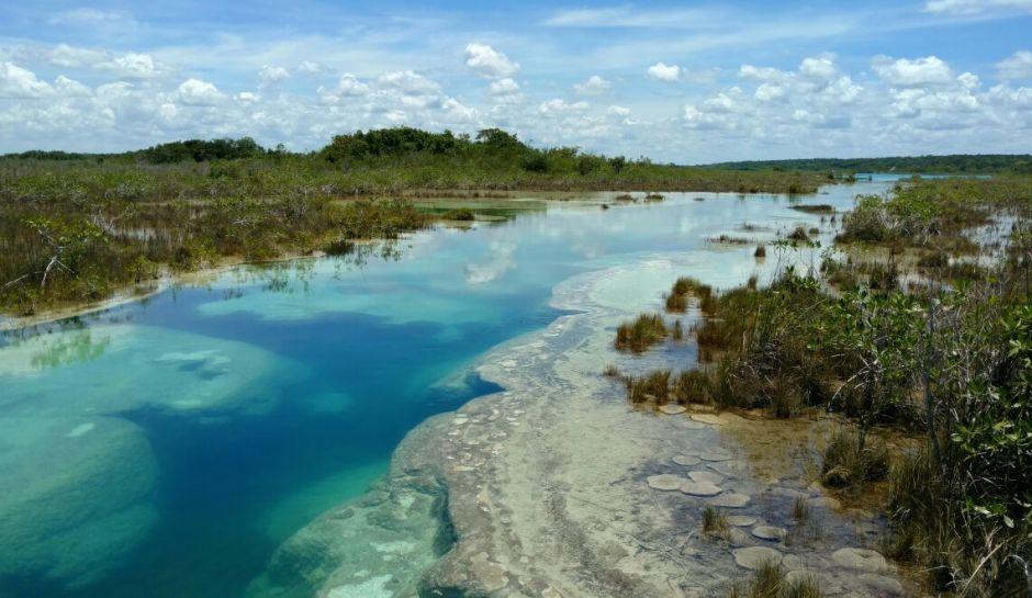 stromatolies-en-los-rapidos-de-bacalar